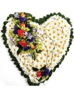 D55.0 Sympathy Heart