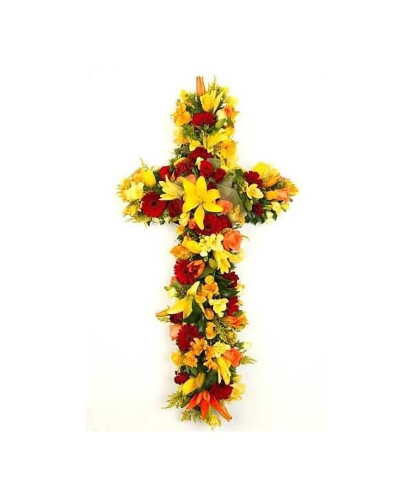 D53.0 Sympathy Cross