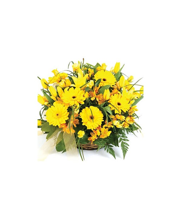 D12.0 Bright Basket Arrangement