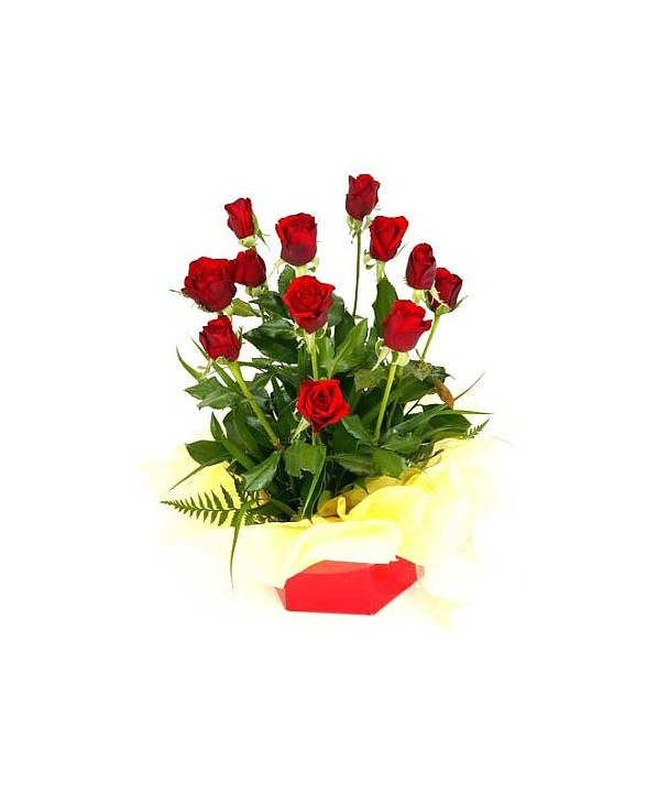 D10.0 Boxed Rose Arrangement