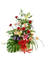 Arrangement of Assorted Flowers