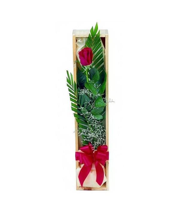 C12.1 Single Boxed Rose