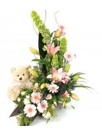 D34.0 Arrangement with Soft Toy