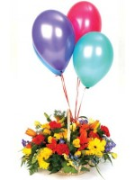 D42.0 Basket Arrangement & 4Balloons