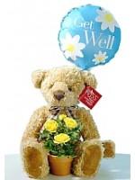 A5.1 Get Well Bear
