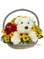 Puppy Flower Basket- Myanmar